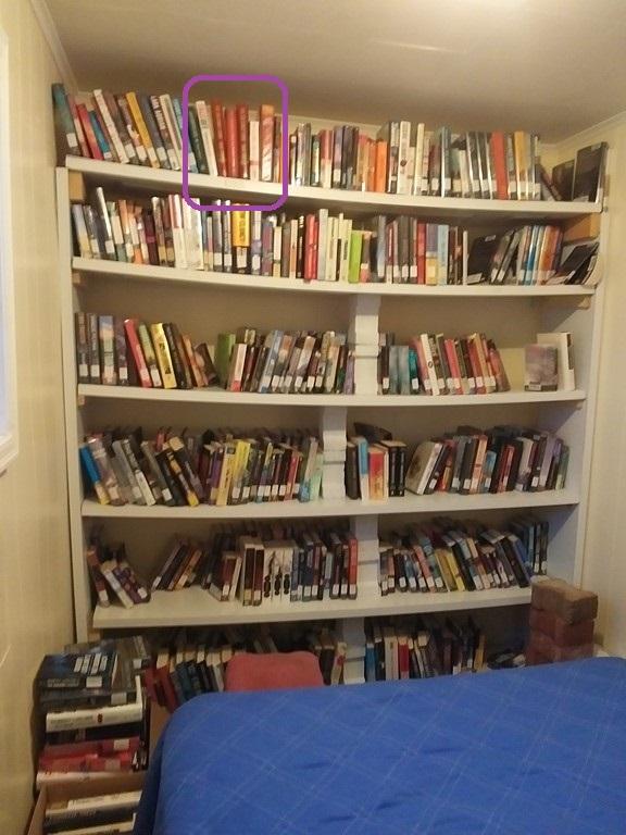 Guest room bookshelves